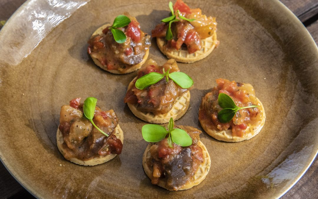 Crackers Tuinkruiden met ratatouille salsa